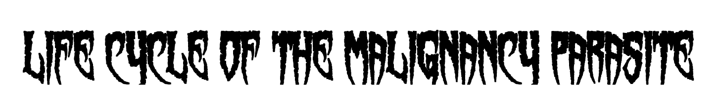 Life Cycle of the Malignancy Parasite